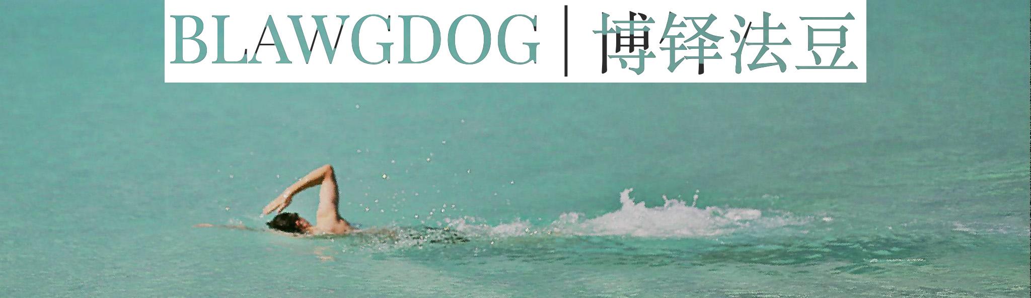 BlawgDog | 博铎法豆